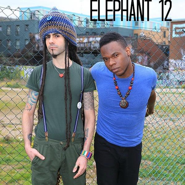 elephant 12 music