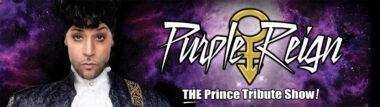 Purple Regin Las Vegas